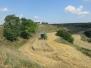 Slizeň pšenice s John Deerem….. (27. července 2014)
